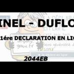 Déclaration d'impôt en ligne – PINEL DUFLOT – Formulaire 2044EB